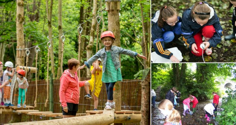 2. Fun and Adventures for all the family at Castlecomer Discovery Park, Kilkenny